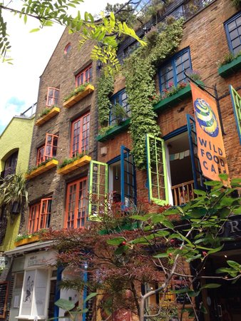 Neal's Yard: Detail