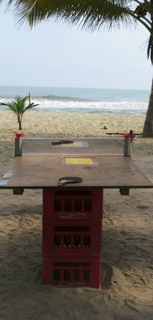 Costeno Beach Surf Camp: Ping and Pong