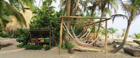 Costeno Beach Surf Camp: Hammocks