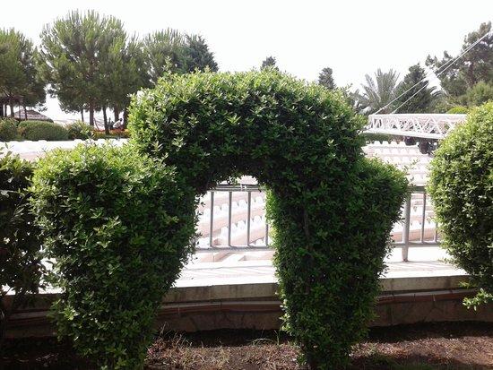 Queens Park Tekirova Resort and Spa: зелень