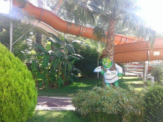 Queen's Park Resort: горки