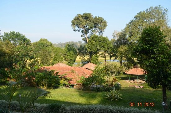 Coorg O farm: View from the room. The building below is the kitchen and restaurant. The pond is also seen