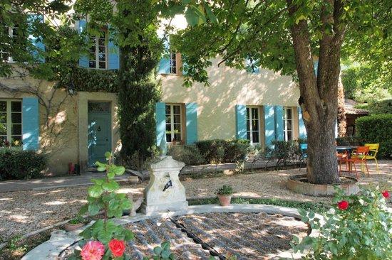 Les Mimosas / A La Maison