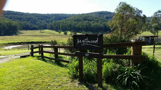 Mystwood: Entry to the retreat