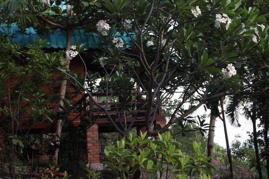 PD Resort: Vue d'un bungalow