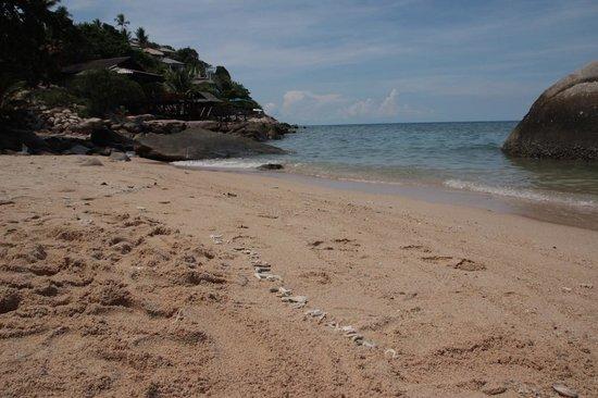 PD Resort : plage