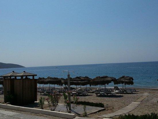Mavi Beyaz Hotel: Sahil