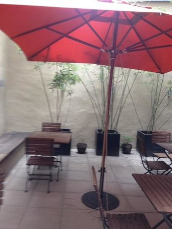 Hotel Casa Colonia : I enjoyed my coffee in this lovely courtyard each morning at Casa Colonia.