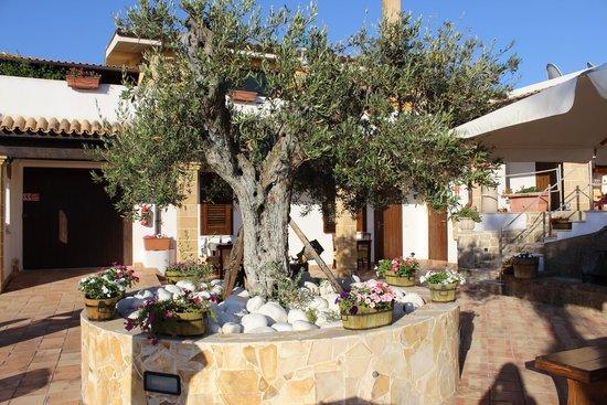 Villa Carlo Resort : Esterno1