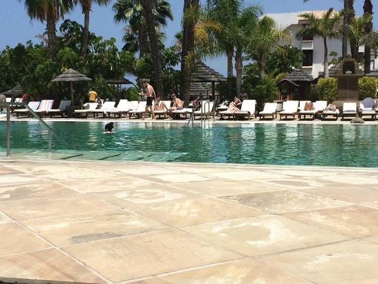 Regency Country Club : Pool