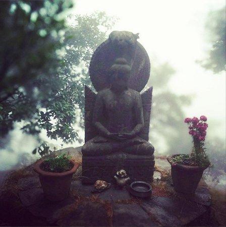 Mary Budden Estate: Buddha on Lens Blur