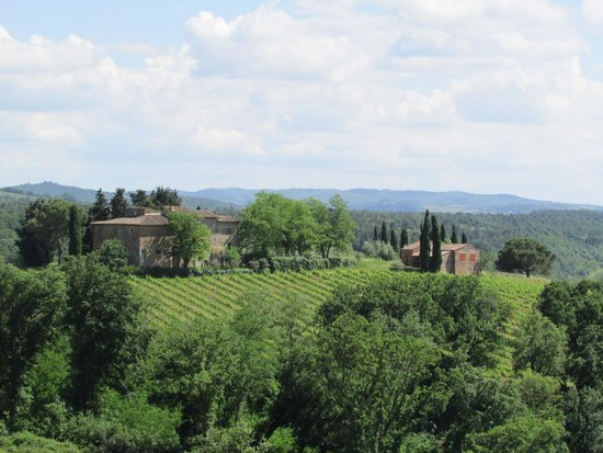 Salvadonica - Borgo Agrituristico del Chianti : Great views