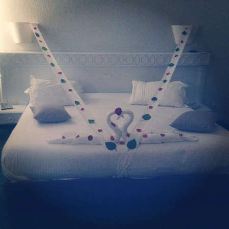 Our lovely bed at el mouradi palm marina!