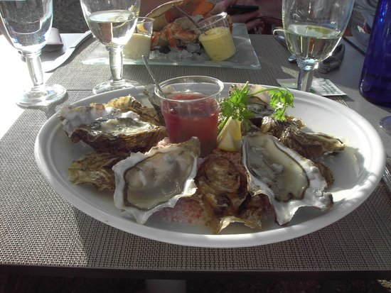 Nausicaa : Local No 3 Oysters