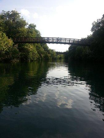 Texas Rowing Center: Lady Bird Lake