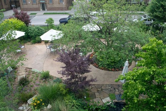 Higher Ground Hotel : The hotel garden, seen from my room