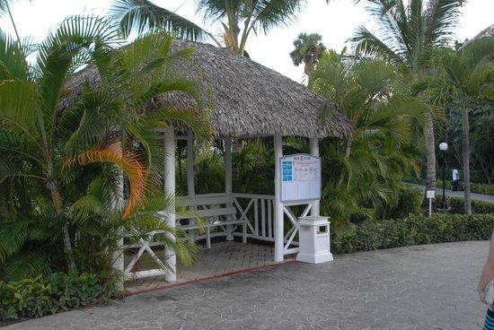 Grand Bahia Principe Punta Cana: Mini bus stops