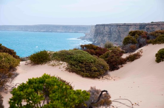 Head of Bight: cliffs 3