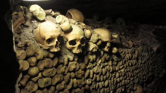 The Catacombs of Paris: Catacombs current Residents