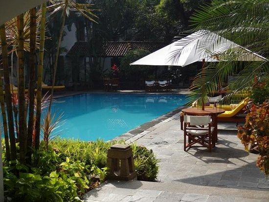 Trident, Cochin : swimming pool