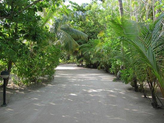 Kuredu Island Resort & Spa: Inselmitte