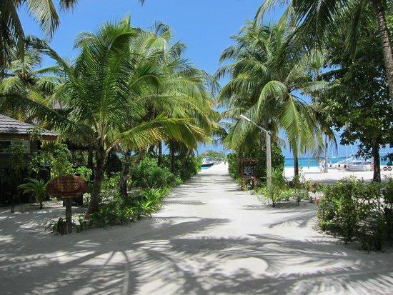 Kuredu Island Resort & Spa: Weg zum Pier