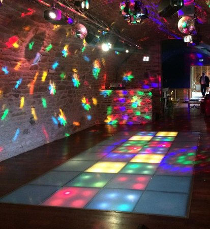 Chateau de Canisy: Disco in the chateau basement!