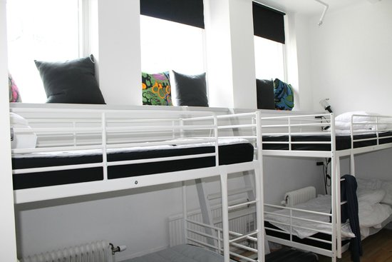 City Backpackers Hostel: room