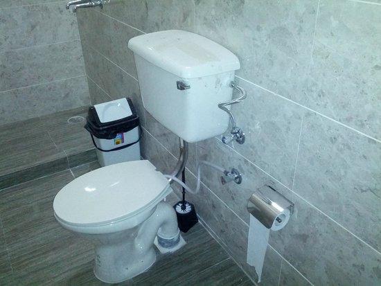 Jugaadus' Eco Hostel: Modern Toilets