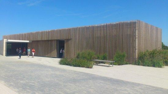 Omaha Beach : Pointe du Hoc