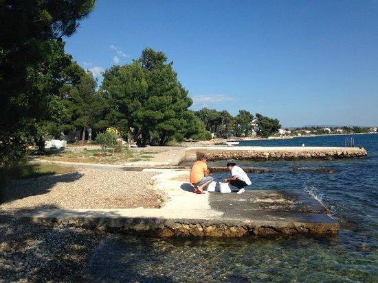 Pansion Kiko : Seaside.
