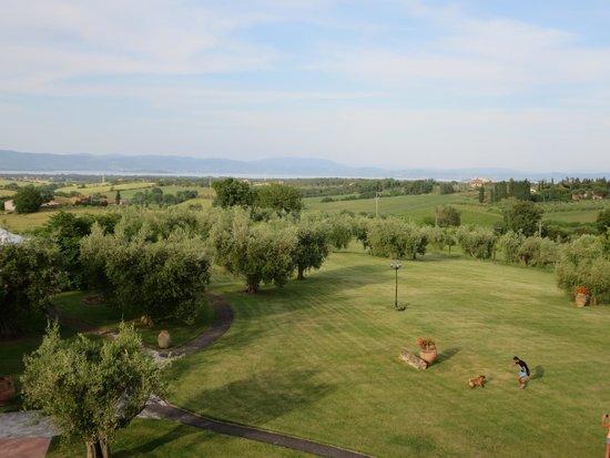 Locanda Poggioleone: View toward Lago Trasimeno