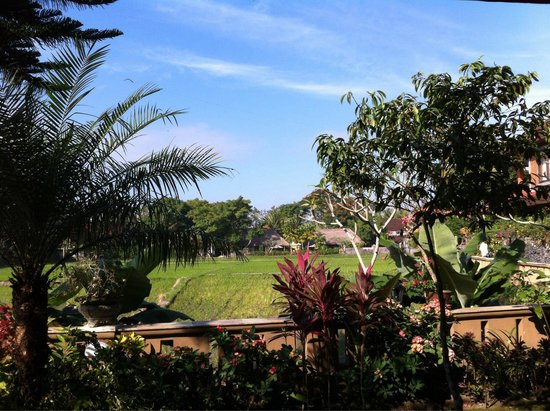 Cendana Resort and Spa: One of the views from breakfast table at Sunrise Restaurant.