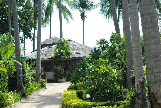 Moonwalk Lanta Resort: Reception and garden