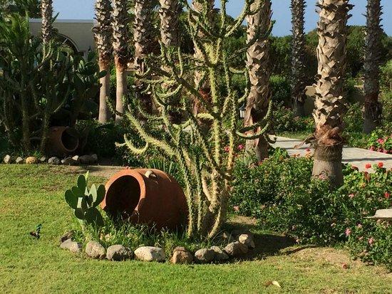 Atlantica Porto Bello Beach: giardino