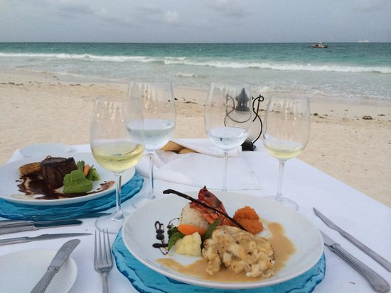 Pavo Real by the Sea: Romantic Dinner by the sea!