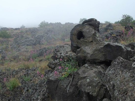 Monte Etna: Old lava flows