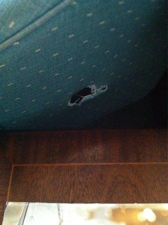 Lyndhurst Park Hotel: Holes