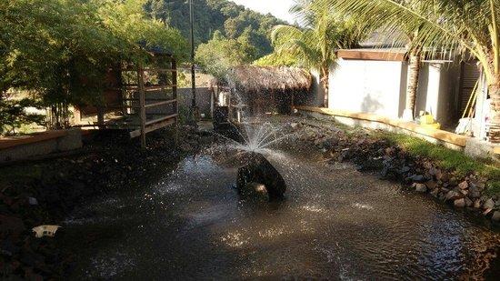 Airis Sanctuary Resort : No more noisy goose