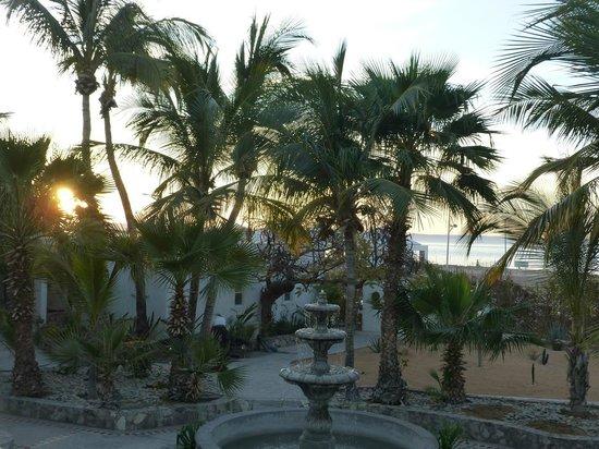Club El Moro: Blick durch den Garten aufs Meer