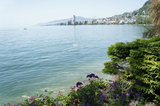Montreux Youth Hostel: рядом с отелем