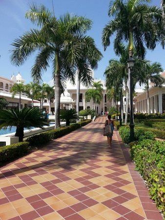 Hotel Riu Palace Punta Cana: looking from beach