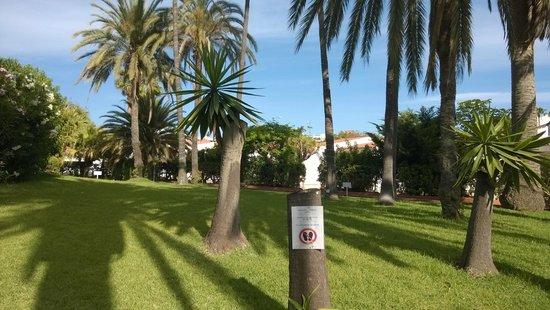 Bungalows Parque Paraiso I: Hotel garden