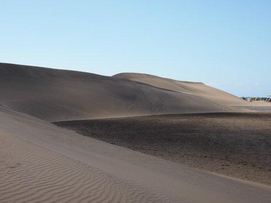 Dunas de Maspalomas: дюны