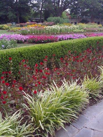 Arboreto y Jardín Botánico de Dallas: Gorgeous colors