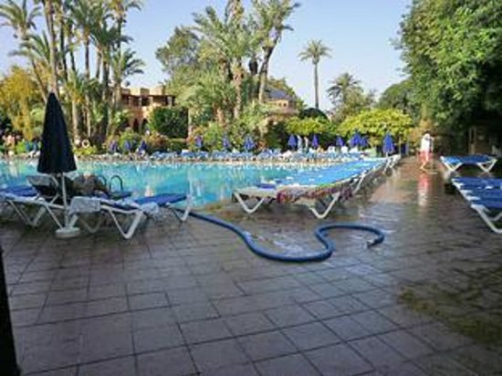 Hotel Riu Tikida Garden : pool.