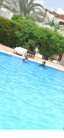 Mexicana Sharm Resort : pool
