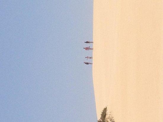 Barcelo Corralejo Bay : The dunes