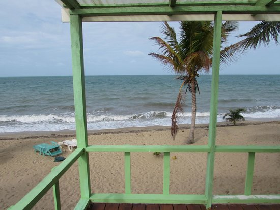Jungle Jeanie's by the Sea : Relax and enjoy the breeze