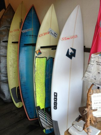 One Love Surf School & Shop: Some boards